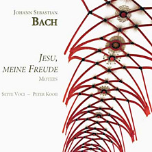 Review of Jesu, meine Freude (Sette Voci, direction: Peter Kooij)