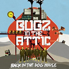 Review of Back In The Dog House