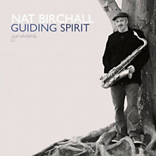 Review of Guiding Spirit