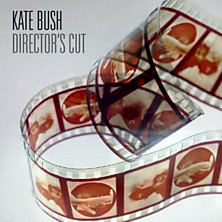 Review of Director's Cut