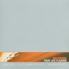 Review of Your Life Flashes