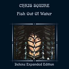 Review of Fish Out Of Water