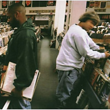 Review of Endtroducing…