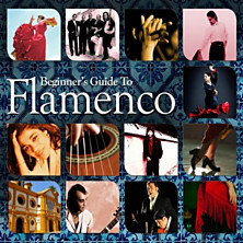 Review of Beginner's Guide to Flamenco
