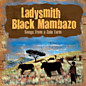 Review of Songs from a Zulu Farm 
