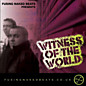 Review of Witness Of The World