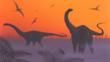Apatosaurus dinosaurs, pterosaurs and ferns in a misty landscape at sunset