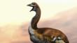 The extinct flightless elephant bird lived in Madagascar until around the 16th century.