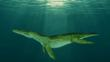 A large pliosaur that lived during the Lower Cretaceous Period