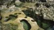 Rockpools