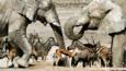 A mixed herd of elephants, zebras and gazelles