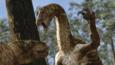 Nothronychus with claws raised in defence