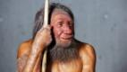Neanderthal