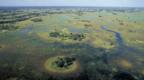 Okavango Delta in Botswana after the rainy season