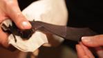 Little bent-winged bat having wing opened