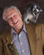 David Attenborough's Madagascar