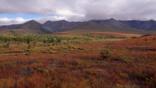Alaskan tundra in autumn colours