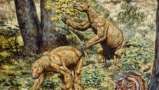 Giant ground sloths