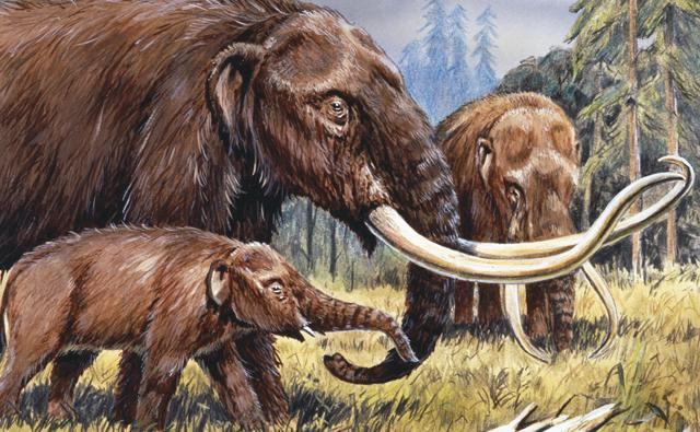 American mastodons in a North American prehistoric forest