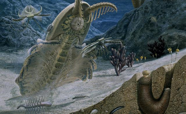 Life on the sea floor during the Cambrian period