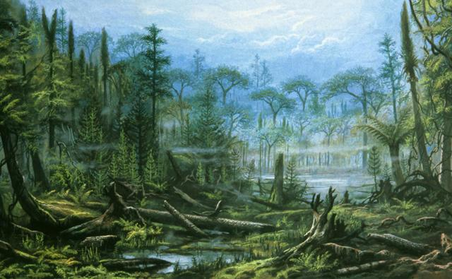 A carboniferous forest during the Carboniferous period with club mosses, ferns and horsetails
