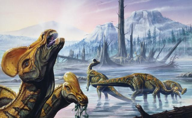 A group of Corythosaurus dinosaurs on a frozen landscape