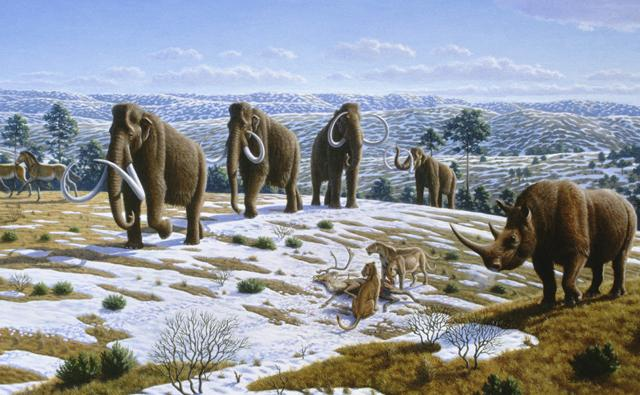 How the landscape during the last Ice Age may have looked, with mammals like the woolly mammoth and woolly rhinoceros