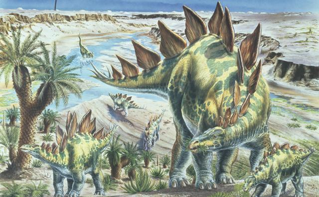 [Image: stegosaurus_1.jpg]