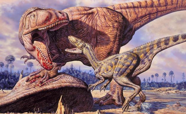 Two fighting carnivorous theropods from the Cretaceous Era