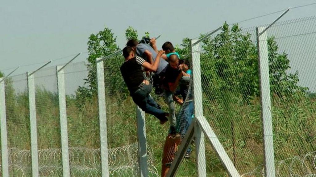 Migrants Breach Hungary Razor Wire Fence Bbc News