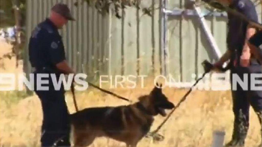 Australia terror arrest: Man held over suspected missiles plan