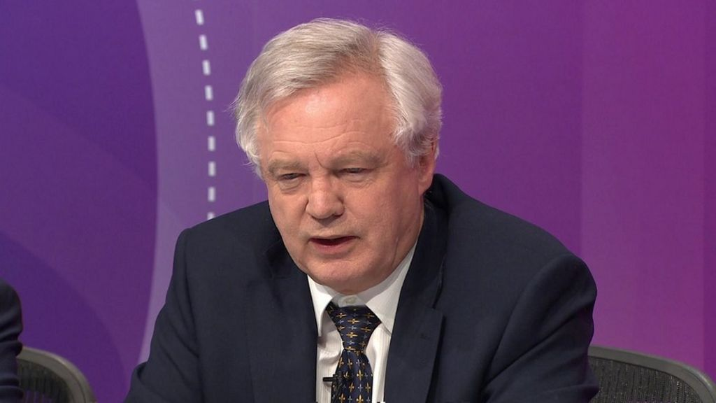 Immigration should rise and fall after Brexit, David Davis says