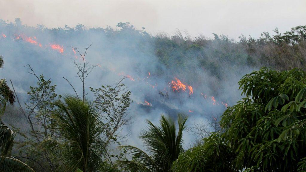 amazon fires humans make rainforest more flammable bbc news