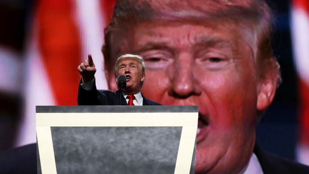 US election: Donald Trump promises a 'safer' America