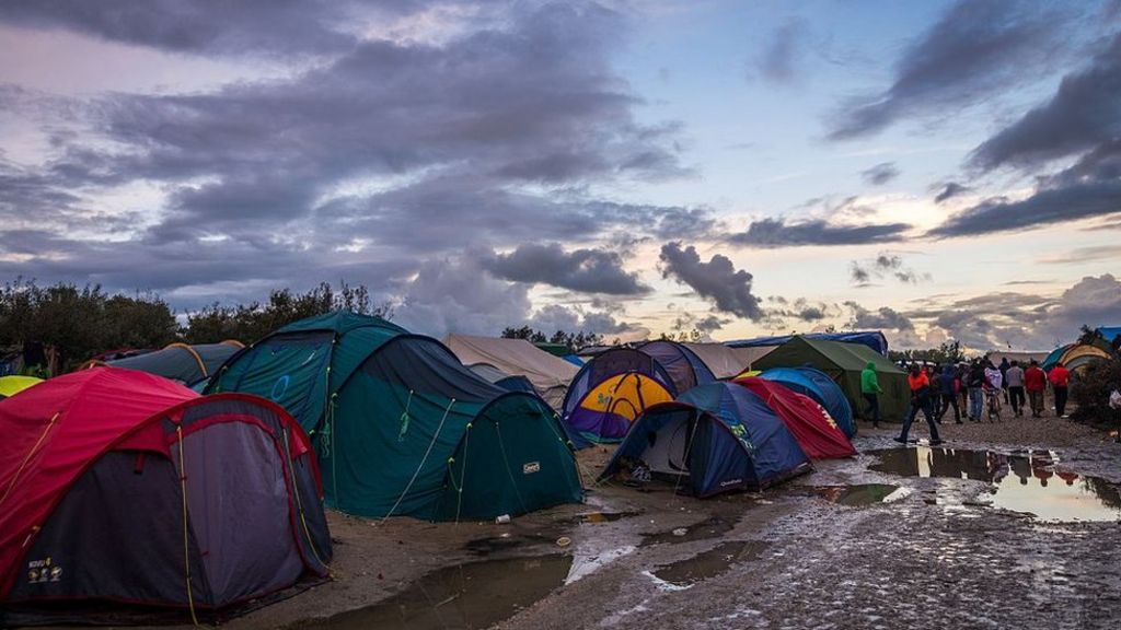 the impact of the jungle essay Helen has spent thousands, seen her marriage break down and found new love volunteering in the calais jungle camp.