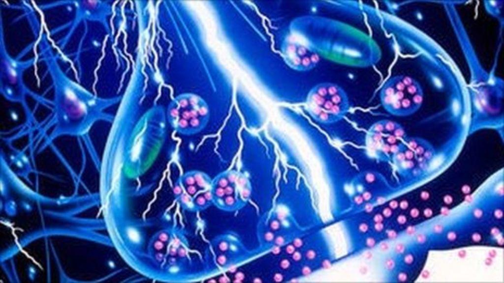 epilepsy and schizophrenia relationship biochemistry