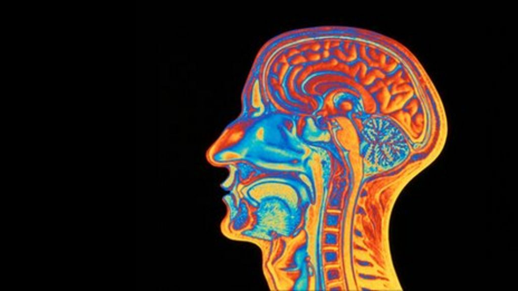Stimulating brain with electricity aids learning speed ...