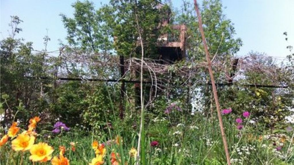 Chelsea Flower Show A Garden Inspired By A War Zone Bbc