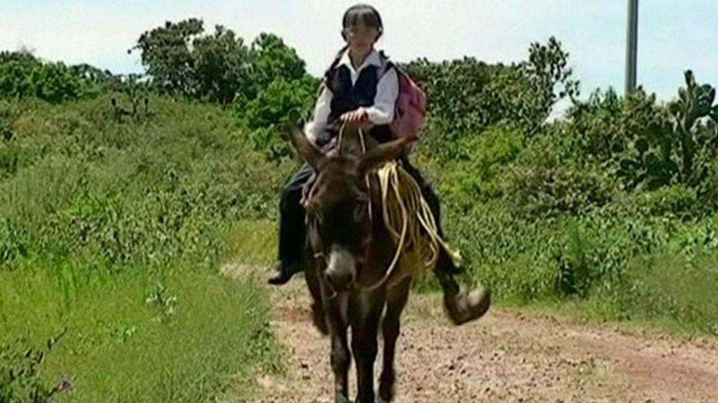 David Riding Bbc