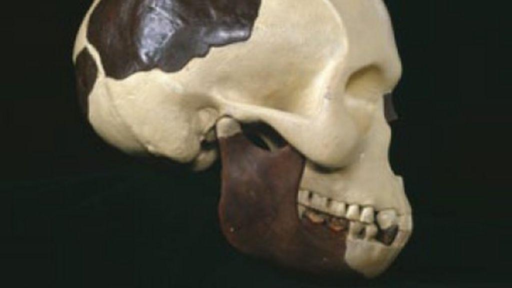 Piltdown Man Hoax 100 Years Ago