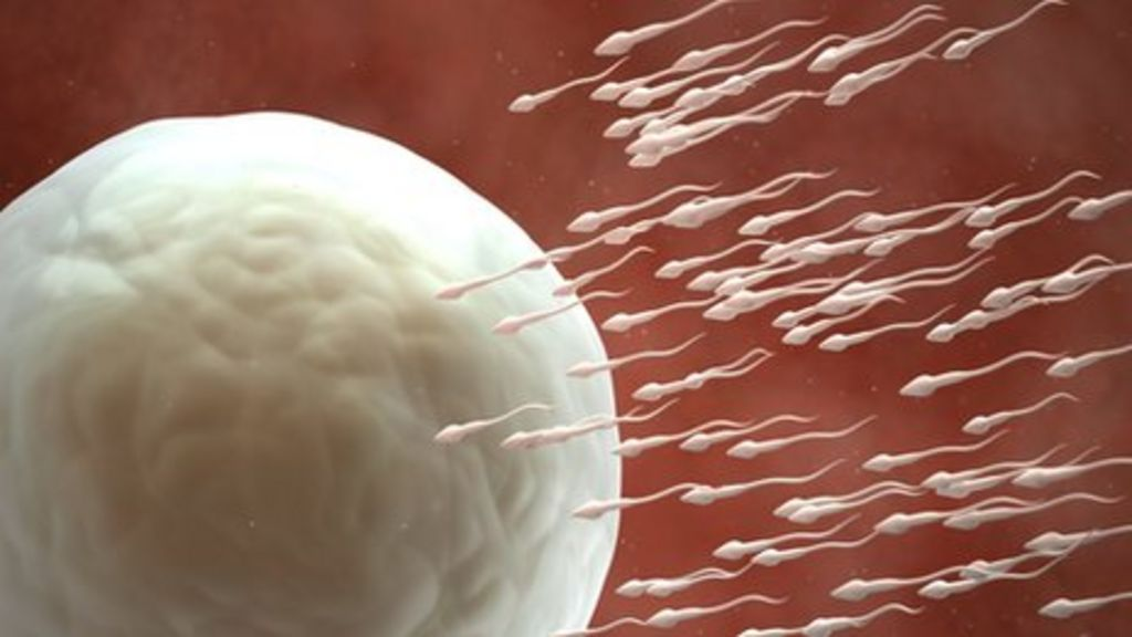 how to make sperm cells stronger