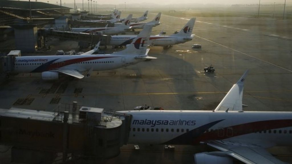 malaysia airlines nature of business When filling out a form, nature of business refers to the type or general category of business or commerce you are describing.