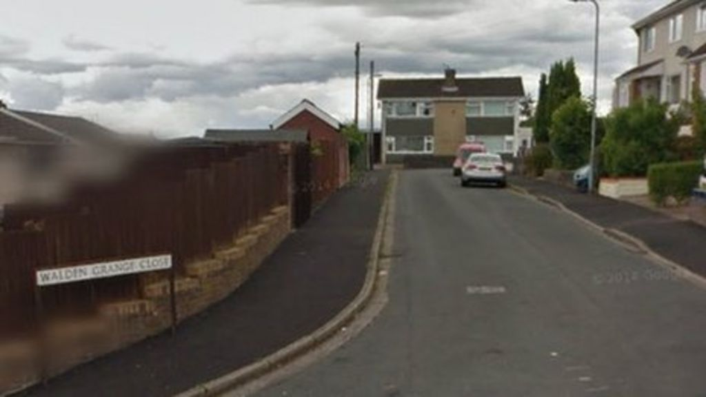 Cat stamped on and killed in Newport 'horrific ordeal' - BBC News