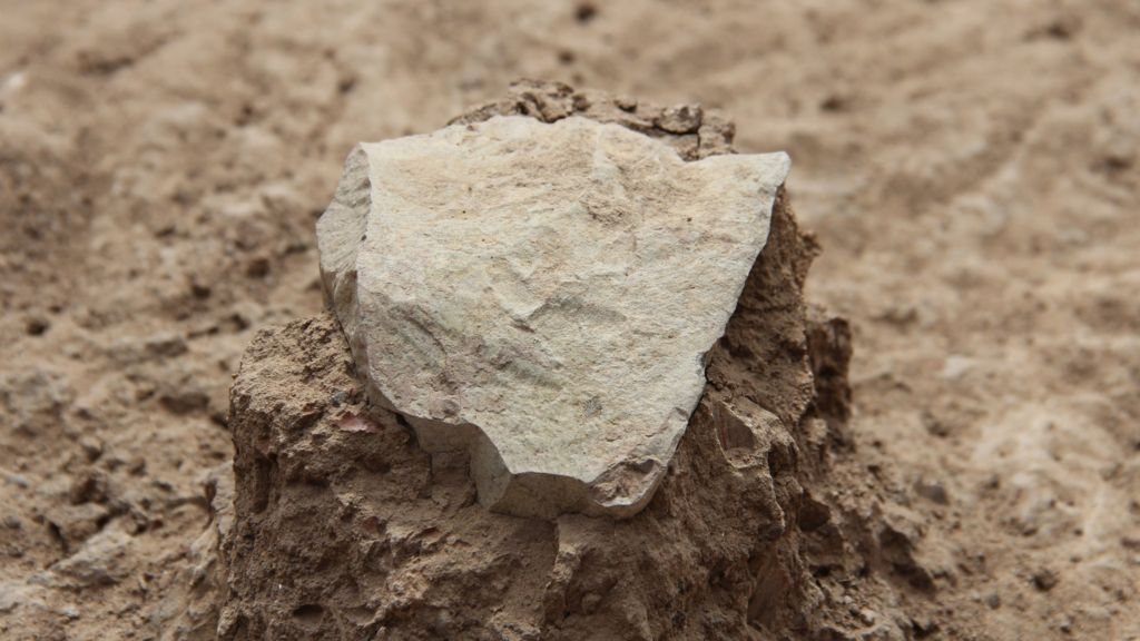 Oldest stone tools pre date earliest humans   BBC News