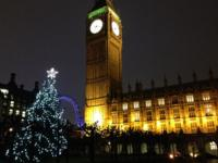 Christmas tree outside the Houses of Parliament