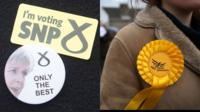 SNP badge and Lib Dem rosette