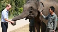 """Prince William meets a rescued elephant called """"Ran Ran"""" at the Xishuangbanna Elephant Sanctuary on 4 March, 2015"""