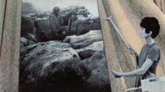 Cleaning the Drapes from House Beautiful: Bringing the War Home, 1967-1972, printed 2007