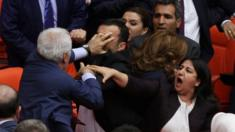 Members of Turkey's governing AK party and pro-Kurdish opposition politicians fight in parliament