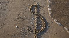 dollar symbol on beach